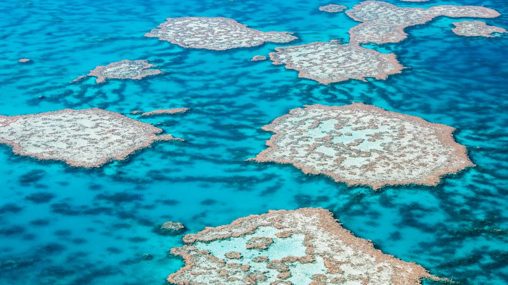 Great Barrier Reef aerial view