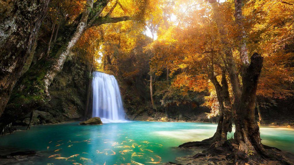 Deep forest waterfall in Kanchanaburi, Erawan National Park, Thailand