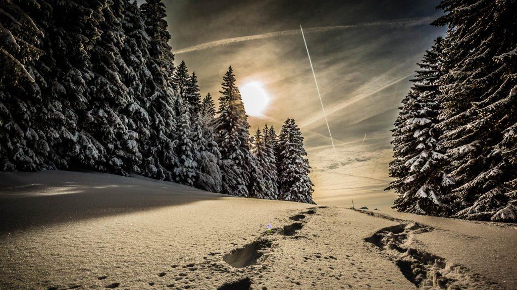 Snowshoeing, Suisse Romande, Switzerland