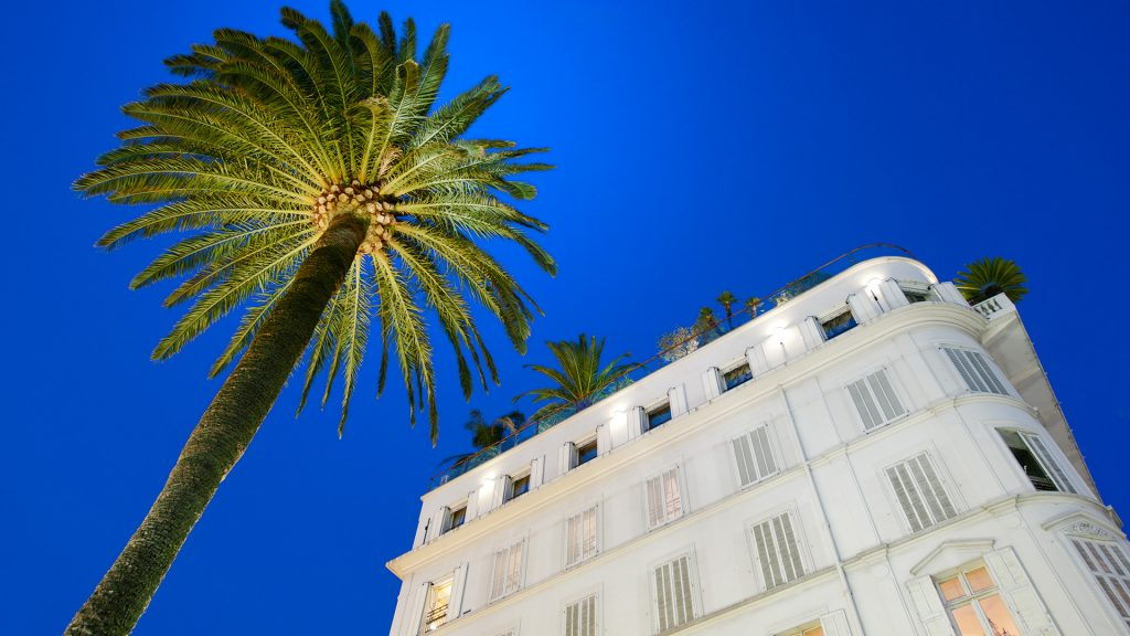 Hotel facade and palm tree at sunset in Cannes, France