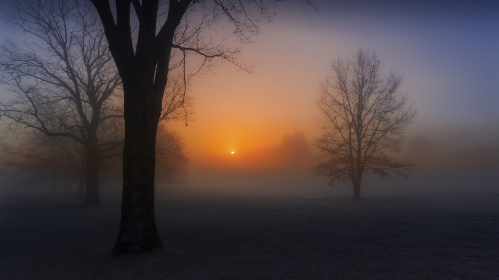 Sunrise in fog, Rockland County, New York state, USA