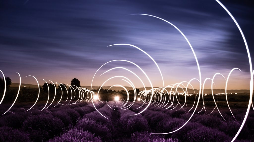 Light painting on lavender field at night, near Shumen, Bulgaria