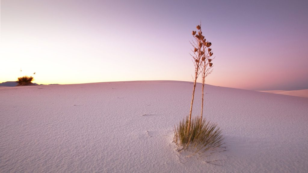 White Sands National Monument at dusk, New Mexico, USA