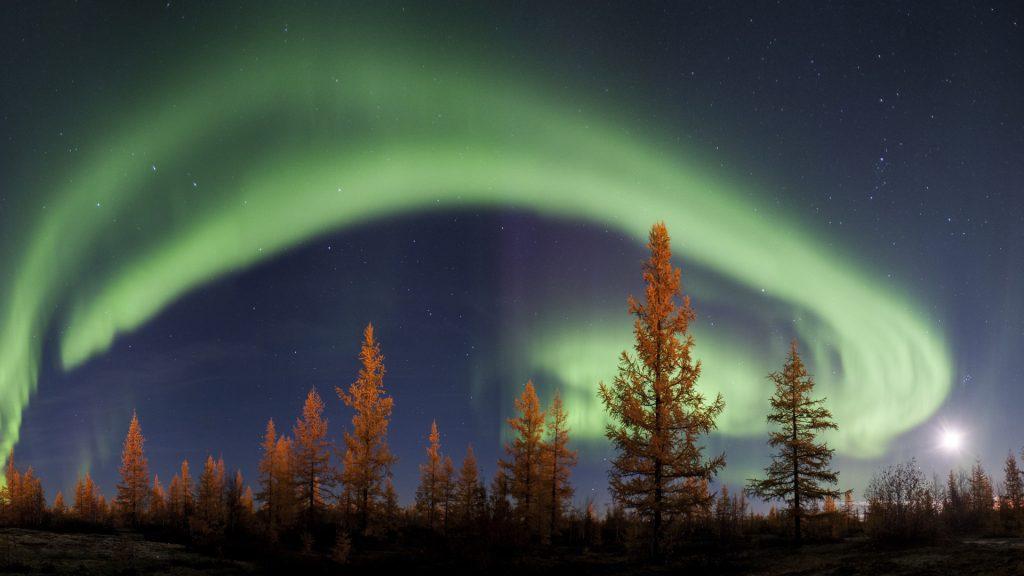 Northern lights or aurora borealis, Tyumen Region, Russia