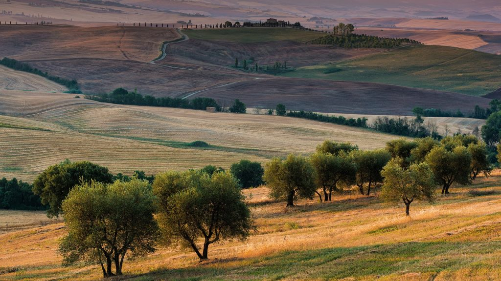 Terrapille, Pienza, Val d'Orcia, Tuscany, Italy