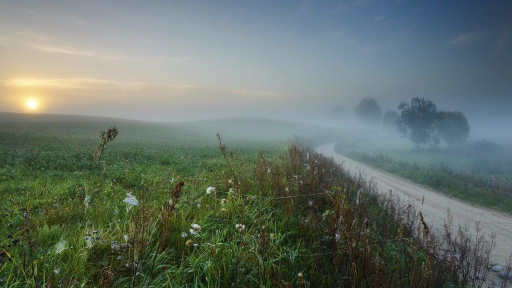 Morning light in Pomorskie province in north Poland, Kashubia (Kaszuby) district