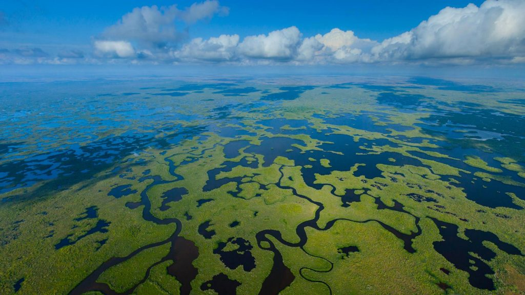 Everglades National Park aerial view, Florida, USA
