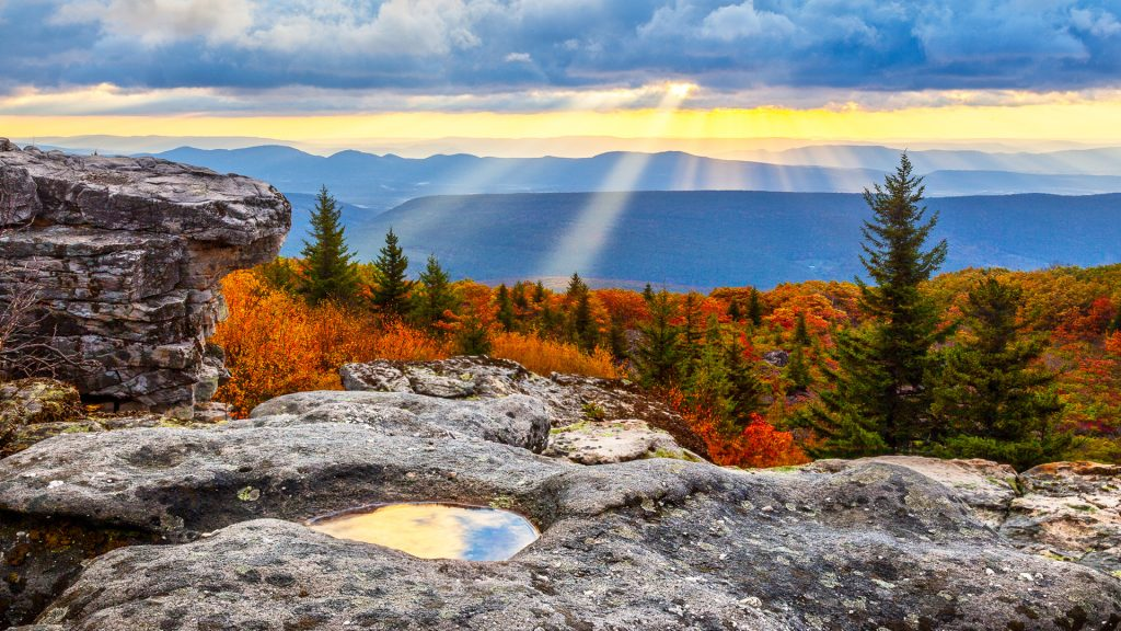 Last lingering rays at sunrise, Dolly Sods Wilderness, West Virginia, USA