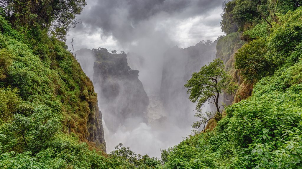 Cloud Forest, Victoria Falls in Zimbabwe