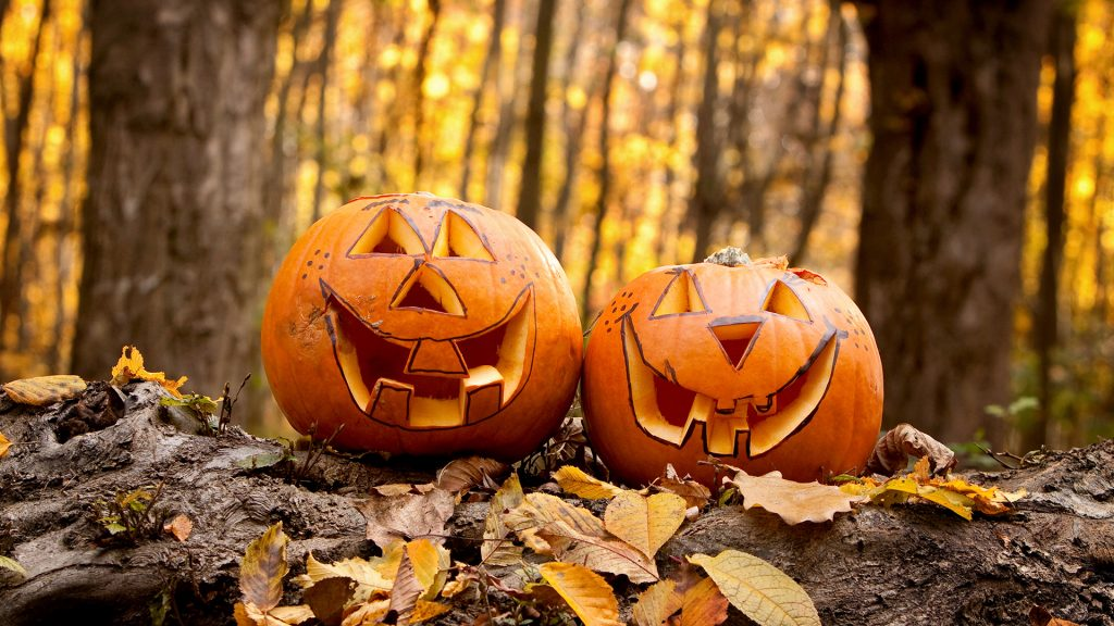 Two carved Halloween pumpkins sit on log in forest of magical light, France
