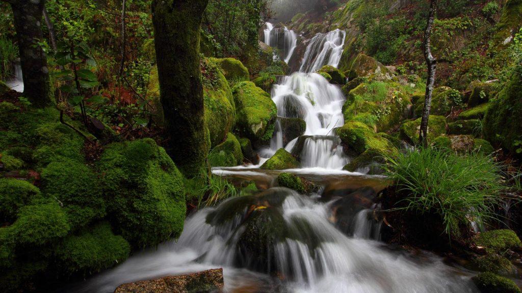 Waterfall in Monte Aloia natural park at spring, Tui, Pontevedra, Galicia Mountains, Spain