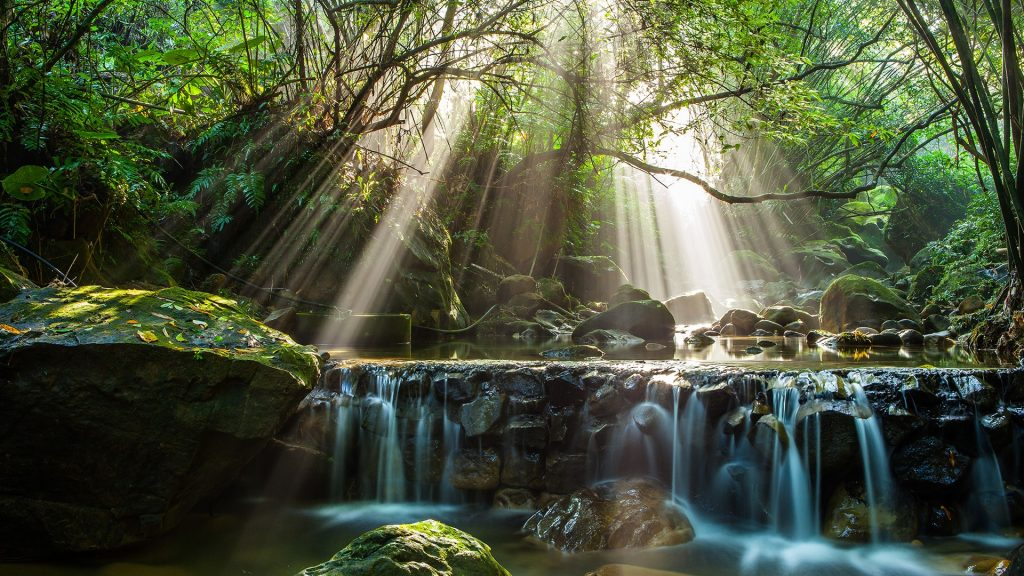 River flow in forest with sun ray, New Taipei City, Taiwan