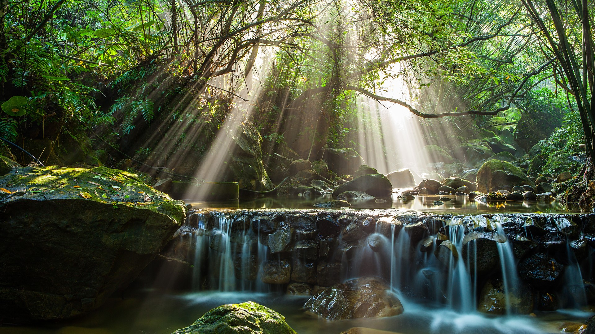 River Flow In Forest With Sun Ray New Taipei City Taiwan