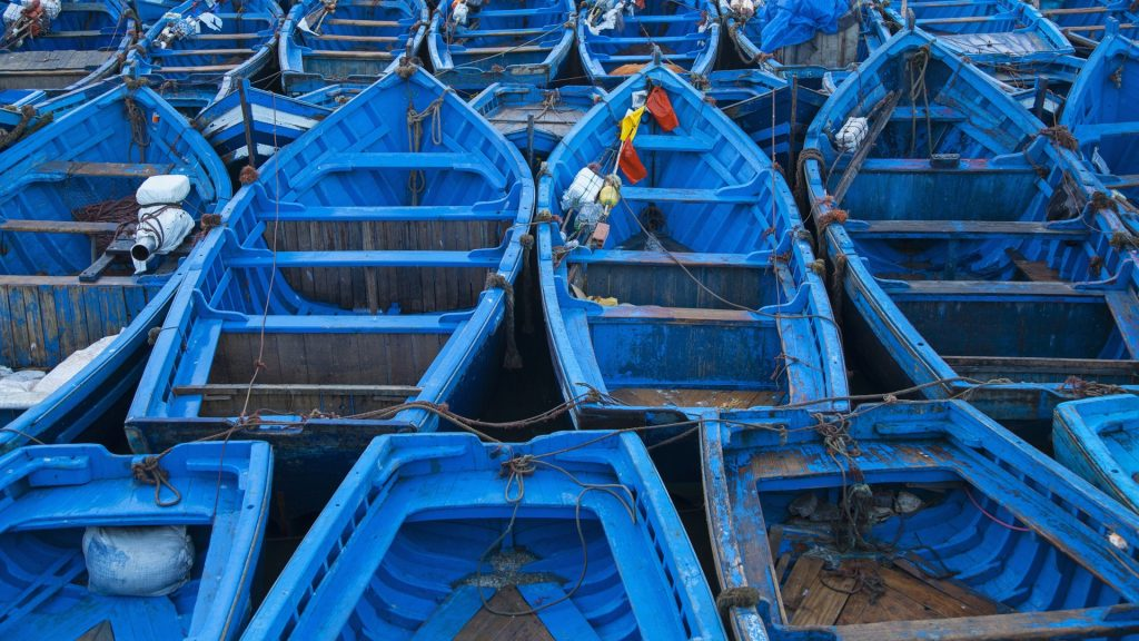 Blue boats docked in harbor, Essaouira, Morocco