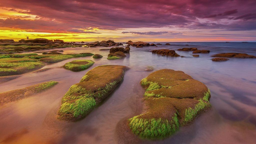Moss covered rocks at sunset, Sabah Beach, Borneo, Malaysia