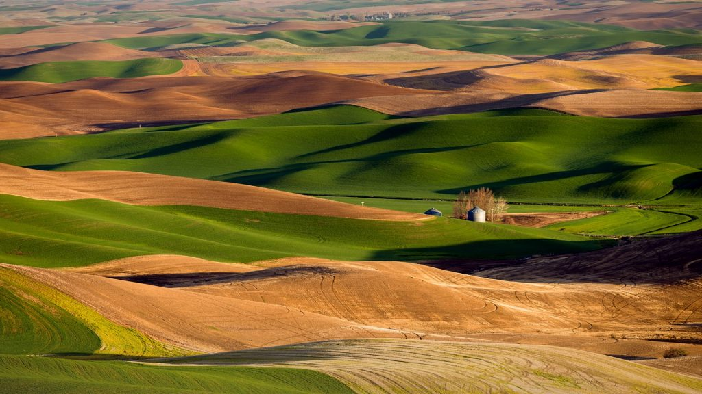 The sun rises setting the landscape in an orange hue, Palouse, Washington, USA