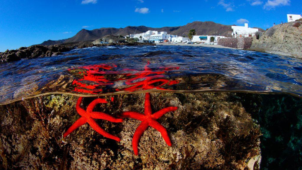 Starfish town, Cabo De Gata, Andalucia, Spain
