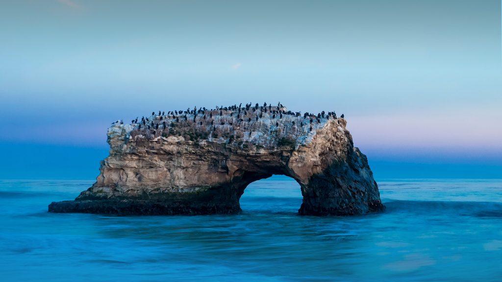 Natural Bridges State Beach, Big Sur, Santa Cruz County, California, USA