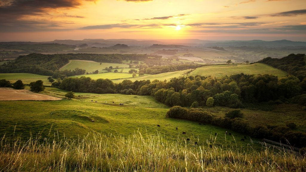 Sunset view from Eggardon Hill over the green hills countryside in England, Dorset, UK
