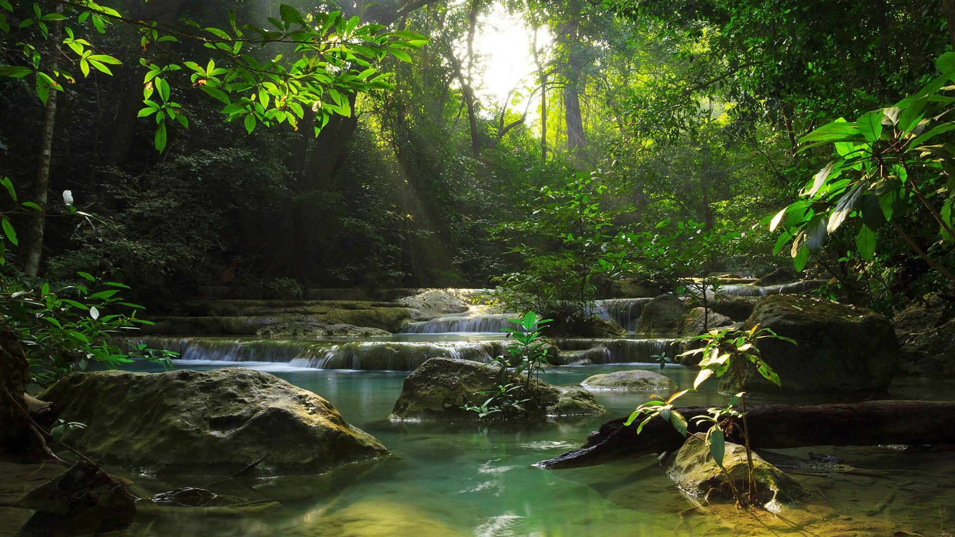 Image result for Erawan National Park in Thailand