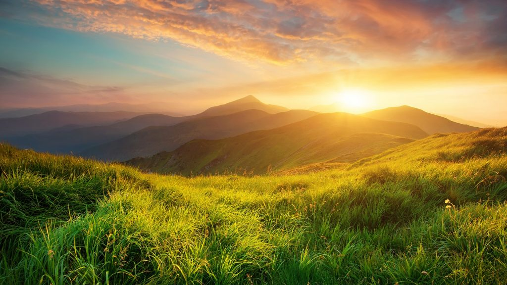 Natural summer mountain valley landscape during sunrise