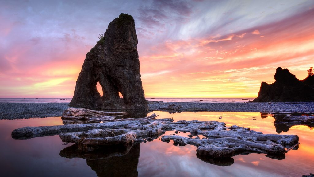 Ruby Beach driftwood and seastacks at sunset, Olympic Peninsula National Park, Washington, USA