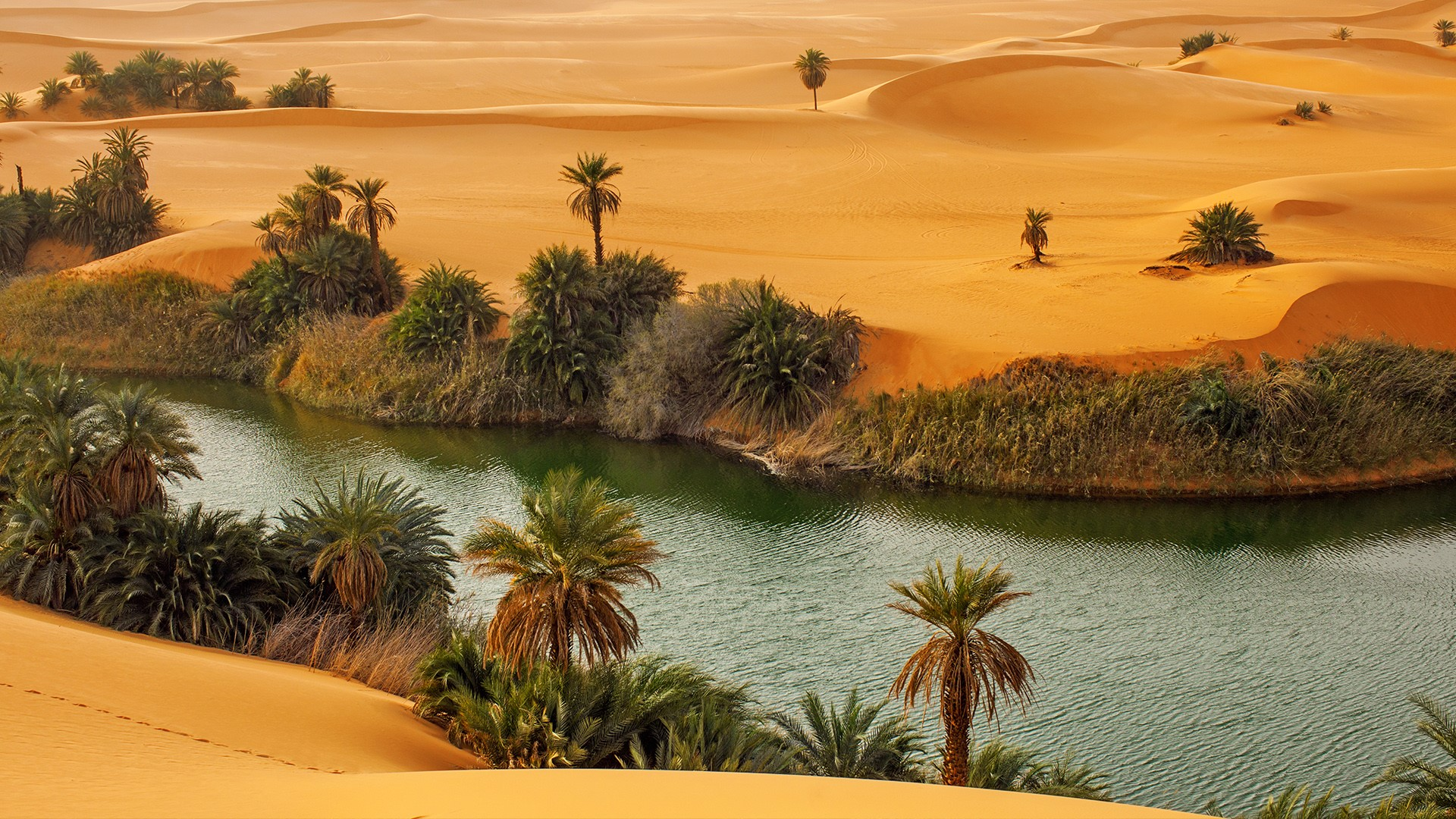 Oasis Umm Al Maa In Sahara Desert Ubari Lakes Libya Windows 10