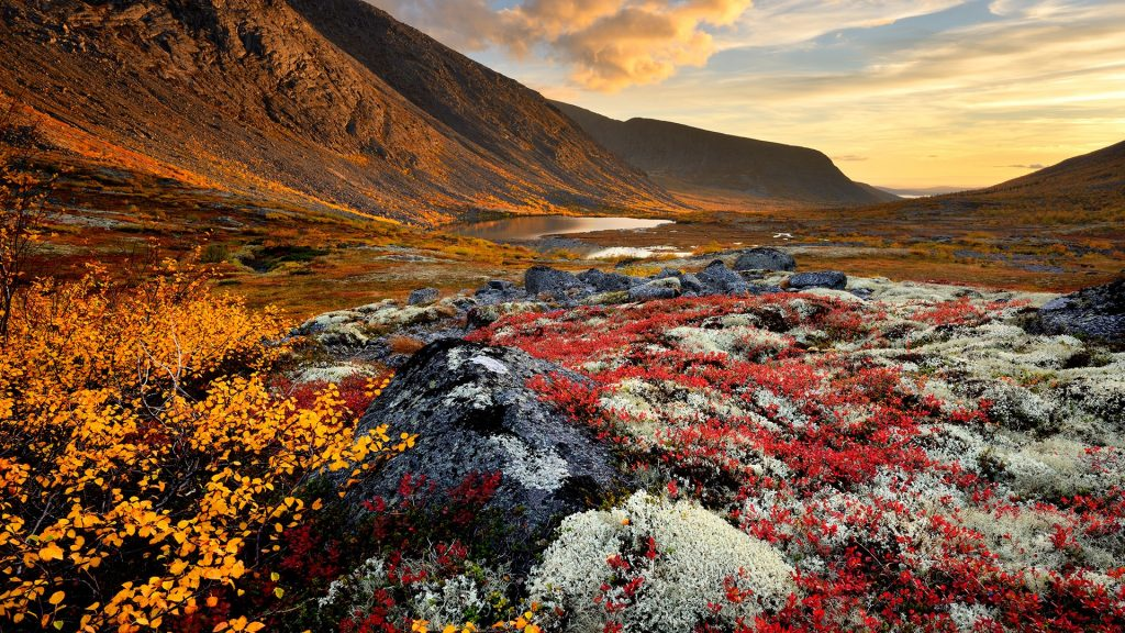 Malaya Belaya river valley, Khibiny mountains, Kola Peninsula, Russia