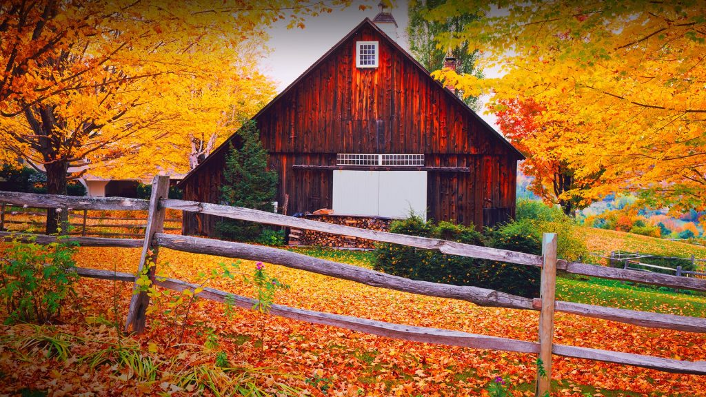 Autumn country side in the hills above Woodstock, Vermont, New England, USA