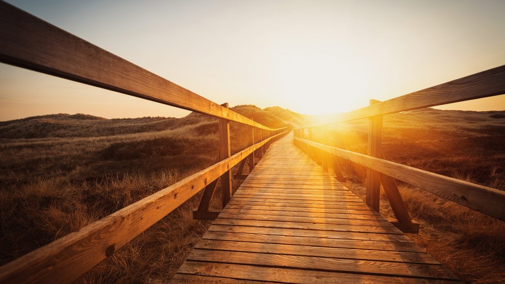 Boardwalk through the dunes into the sun, Germany north sea region