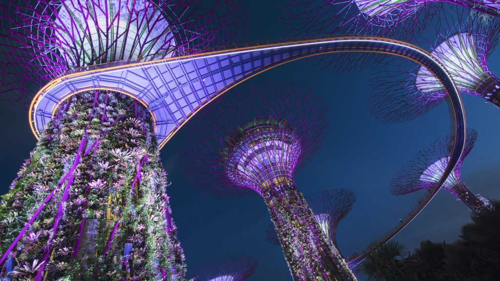 Supertree Grove in Gardens by the Bay at night, Singapore