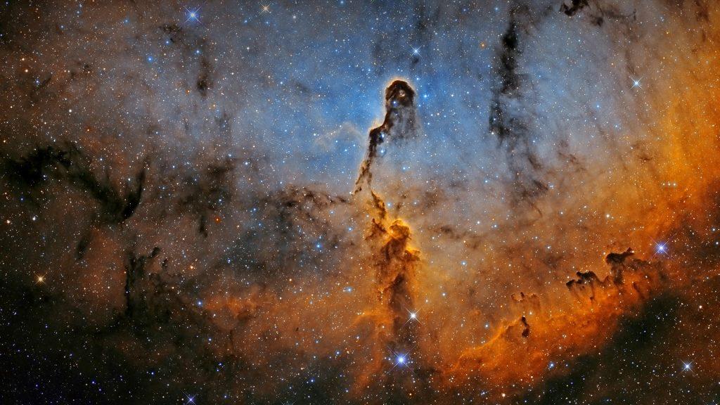 Elephant Trunk Nebula IC 1396 in Cepheus constellation