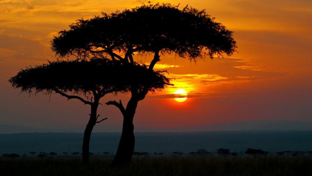 Sunset in Africa, Maasai Mara National Reserve, Narok County, Kenya