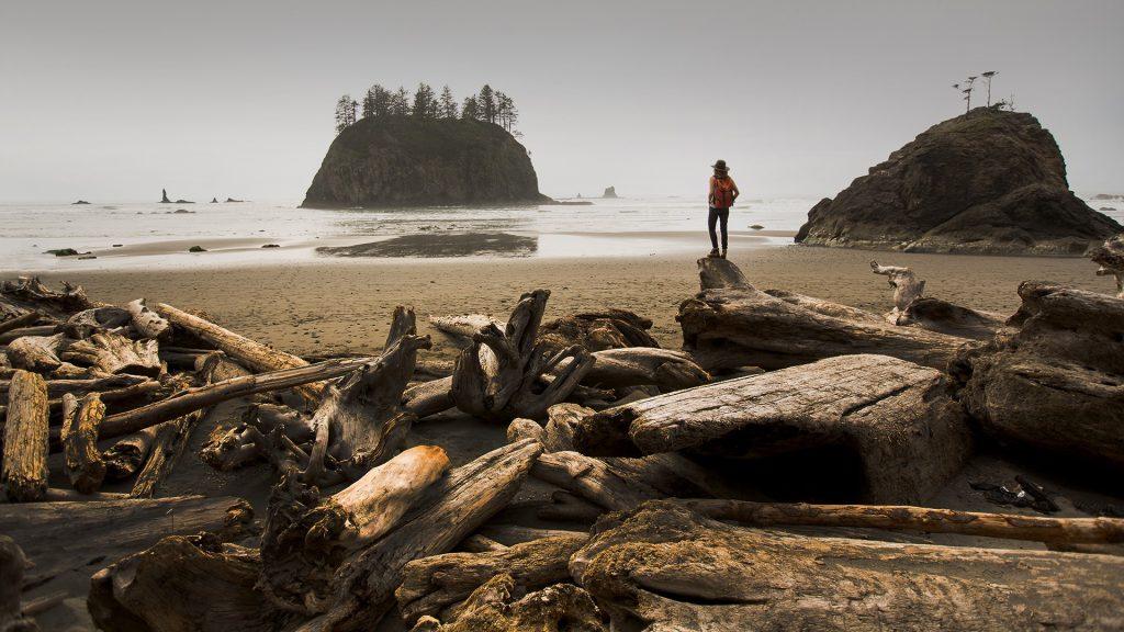 Woman hiking along a remote beach, Second Beach, La Push, Port Angeles, Washington, USA