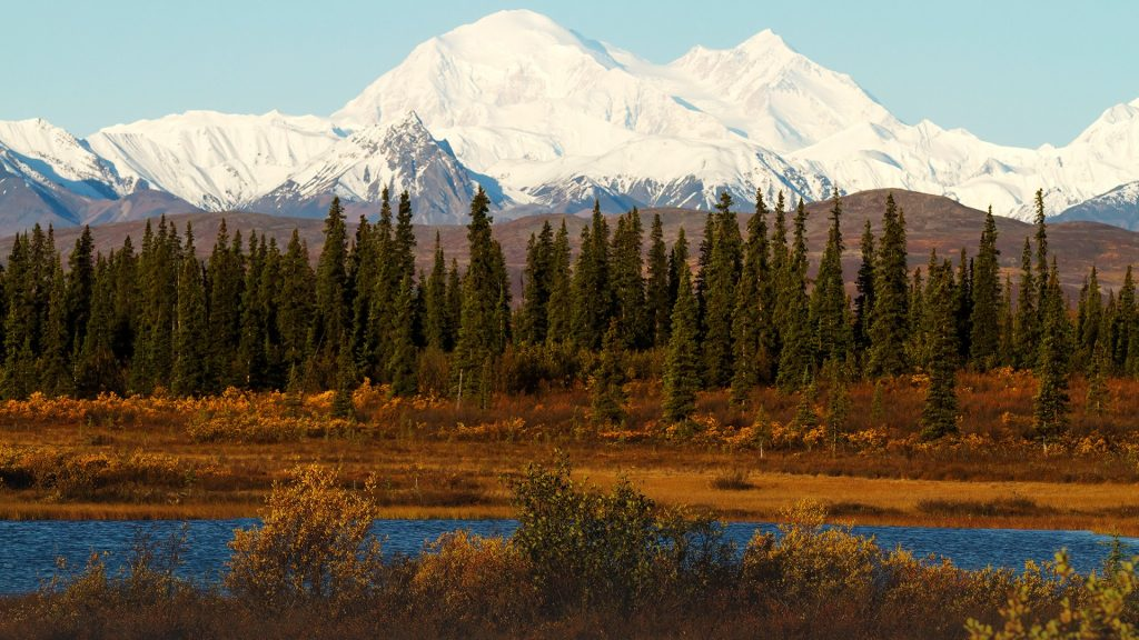 Mount Denali (McKinley) view from the Parks Highway south of Cantwell, Alaska, USA