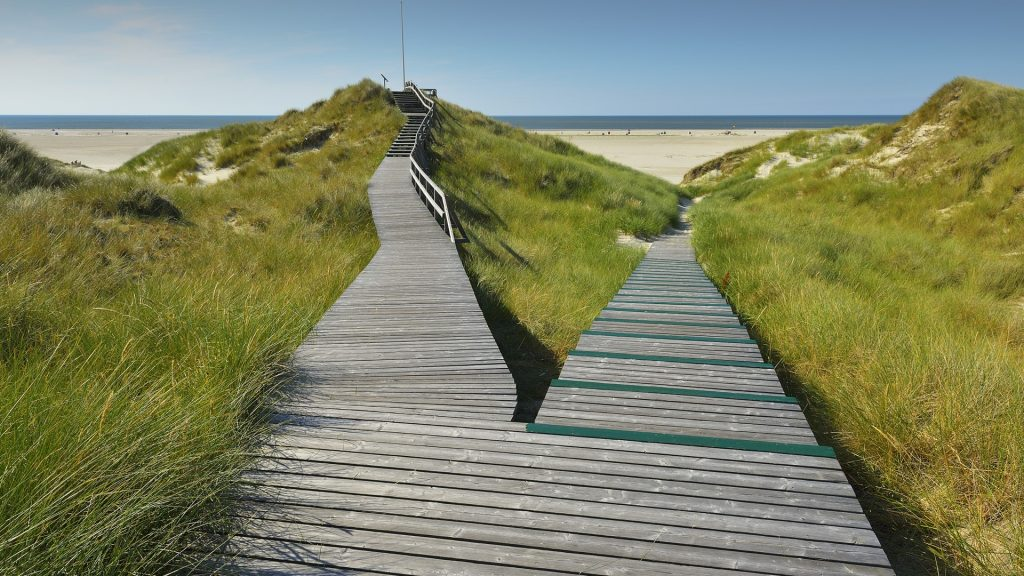 Forked wooden walkway, Norddorf, Amrum, Schleswig-Holstein, Germany
