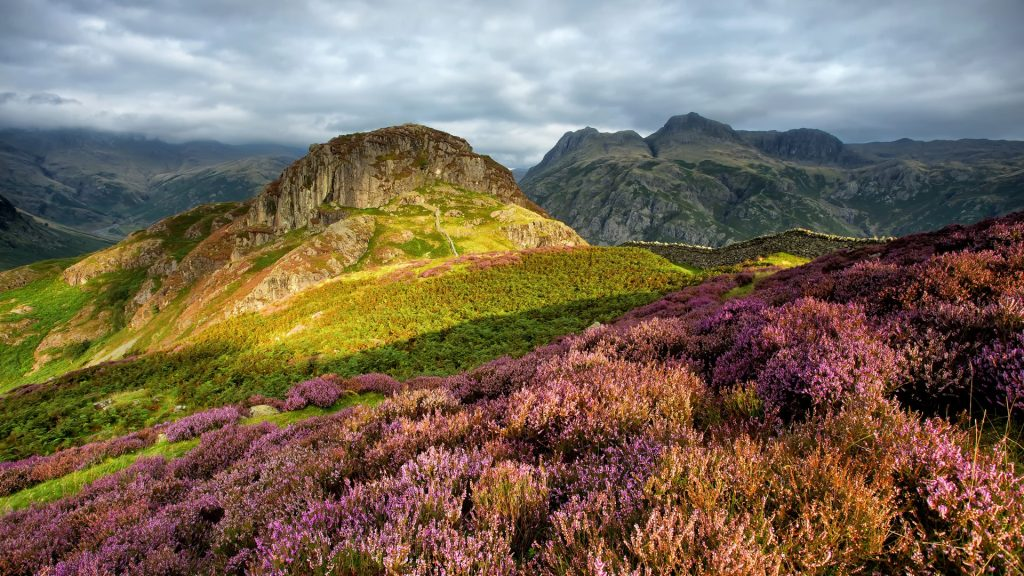 Lingmoor Fell (Side Pike) with Langdale Pikes behind, Lake District, Cumbria, England, UK