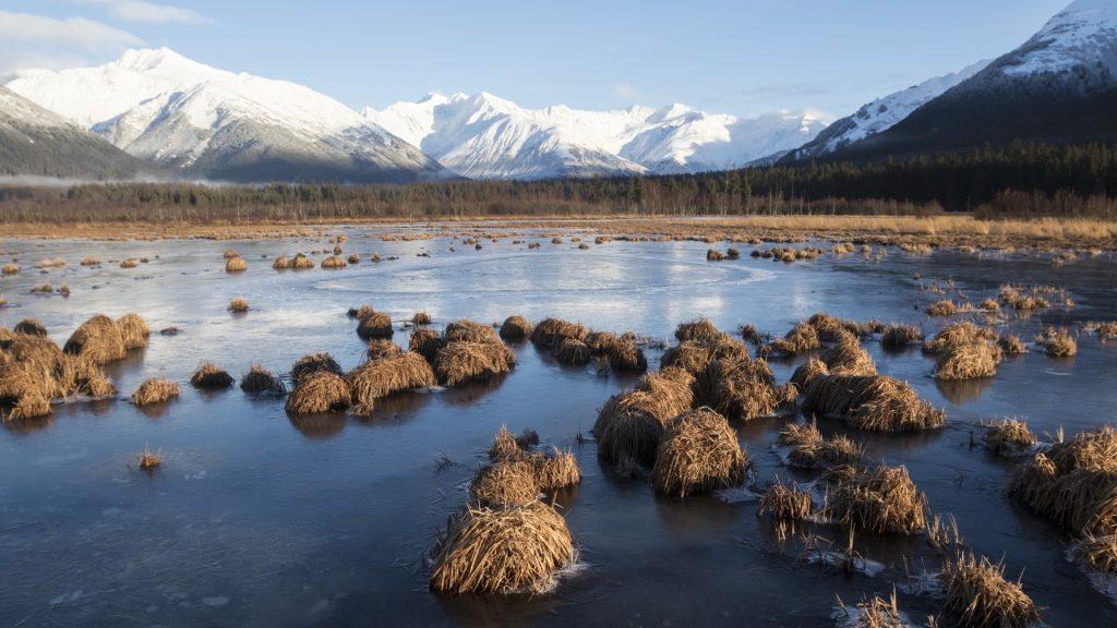 Early winter view of frozen marshland near Girdwood, Turnagain Arm, Alaska, USA