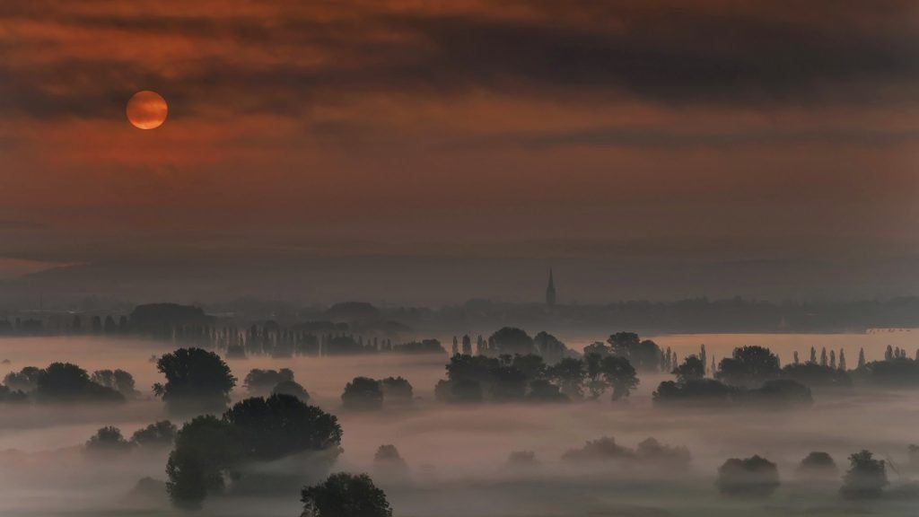 View of Lake Constance and Radolfzeller Aach in morning mist, Baden-Württemberg, Germany