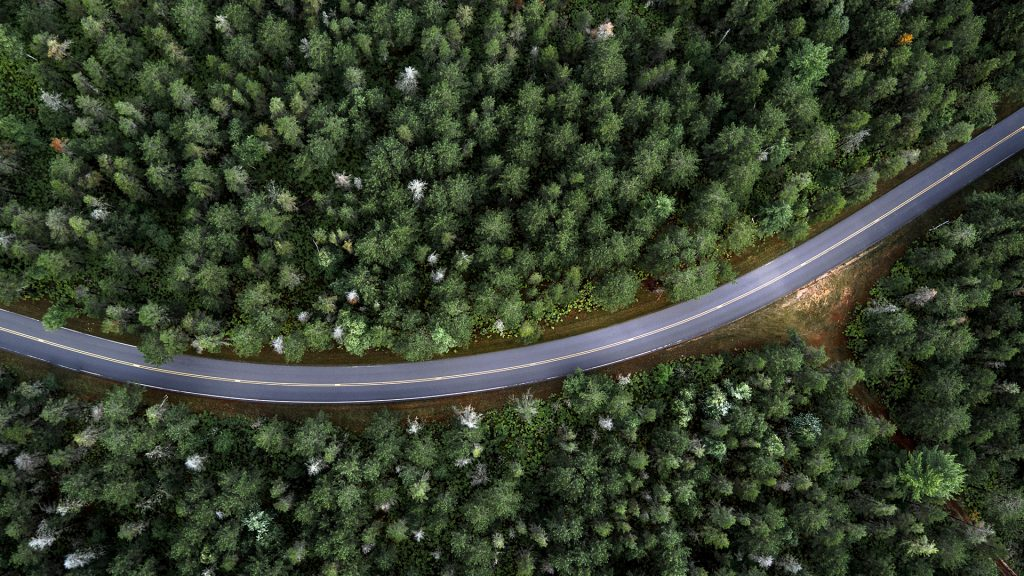 Country road through forest aerial view, north USA