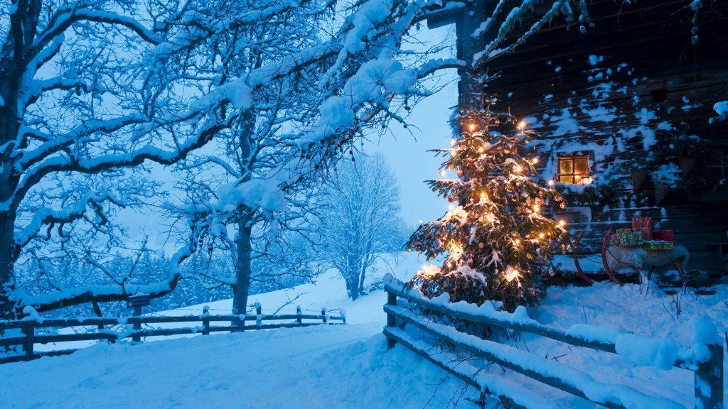 Illuminated Christmas tree with sleigh in front of alpine hut at dusk, Flachau, Salzburg Country, Austria