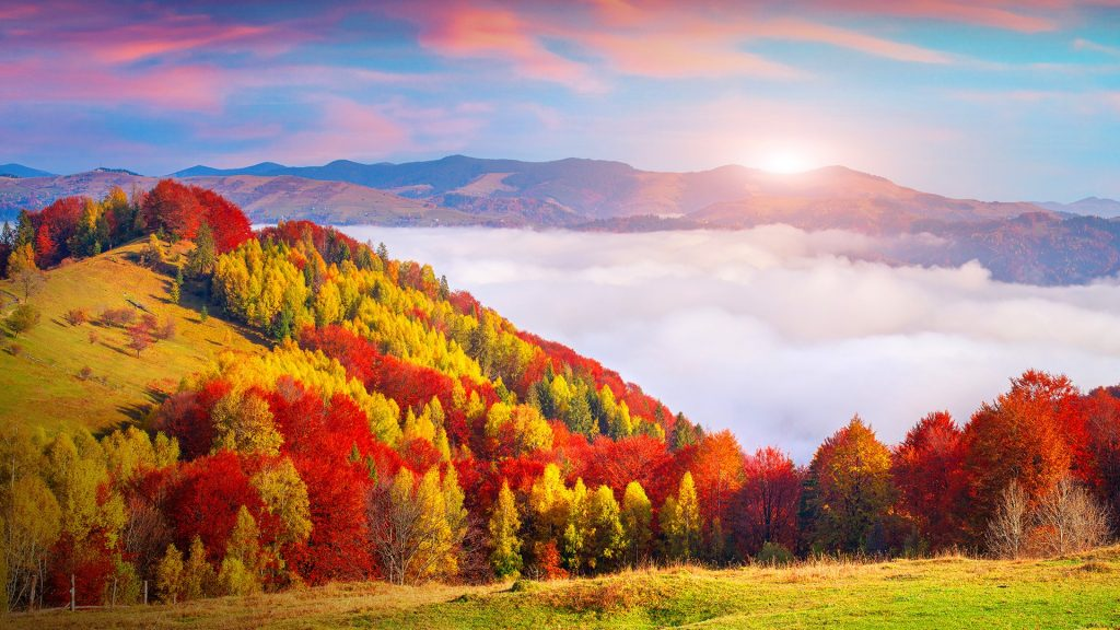 Autumn morning in the Carpathian mountains, Sokilsky ridge, Ukraine