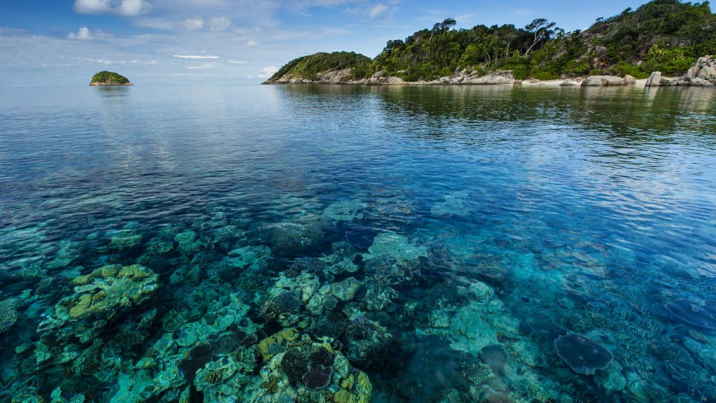 Seascape of coral surrounding a tropical island, Pulau Lintang, Anambas Archipelago, Indonesia