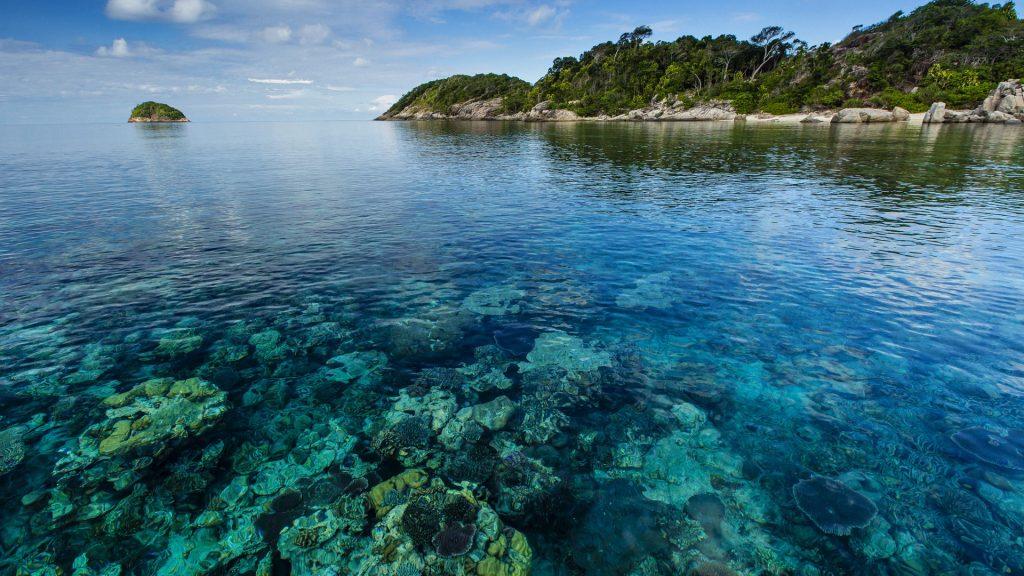Seascape of coral surrounding a tropical island, Pulau Lintang, Anambas Archipelago, Indonesia