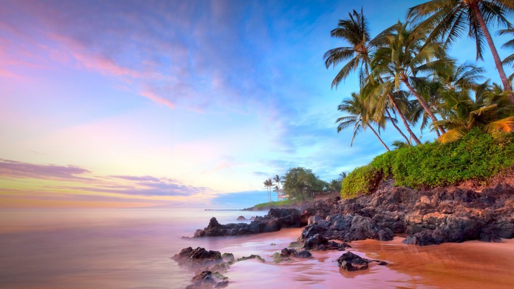 Palm trees on Poolenalena beach at sunset, Maui, Hawaii, USA