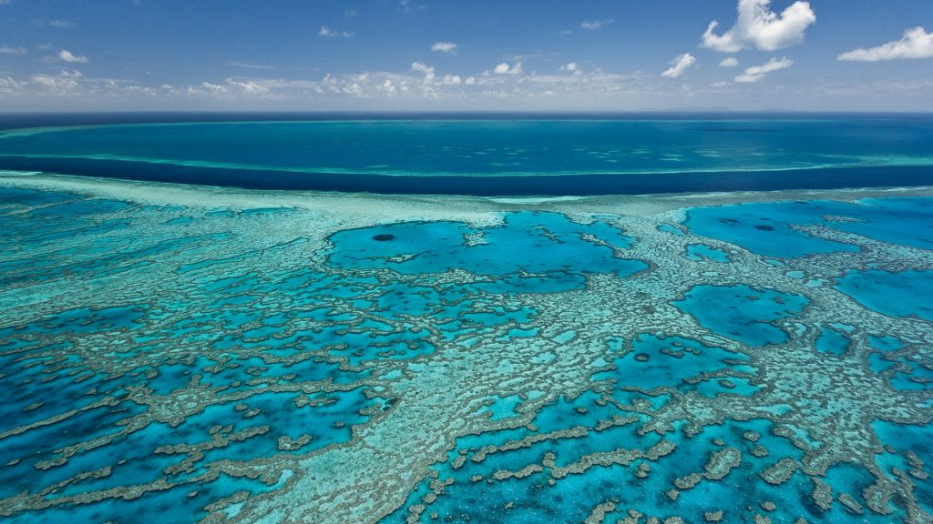 Coral reefs in blue Pacific waters, Australia, Great Barrier Reef