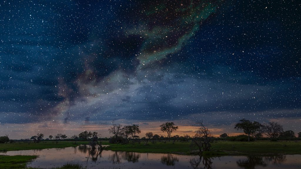 Starry night sky over swamp, Okavango Delta, Botswana, Limpopo, South Africa
