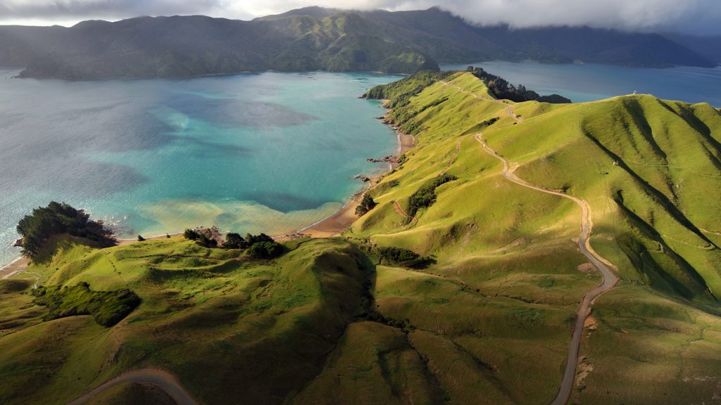 Aerial view of Marlborough Sounds, South Island of New Zealand