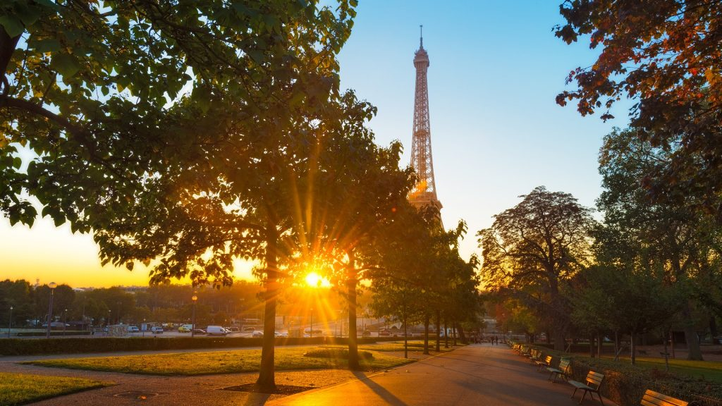 Sunrise in Paris at the Trocadéro place with Eiffel tower behind the trees, France