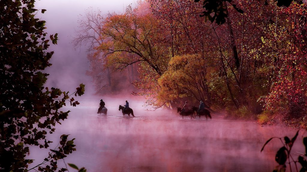 Horses and riders crossing the river on a foggy morning in the Ozarks, Eminence, Missouri, USA